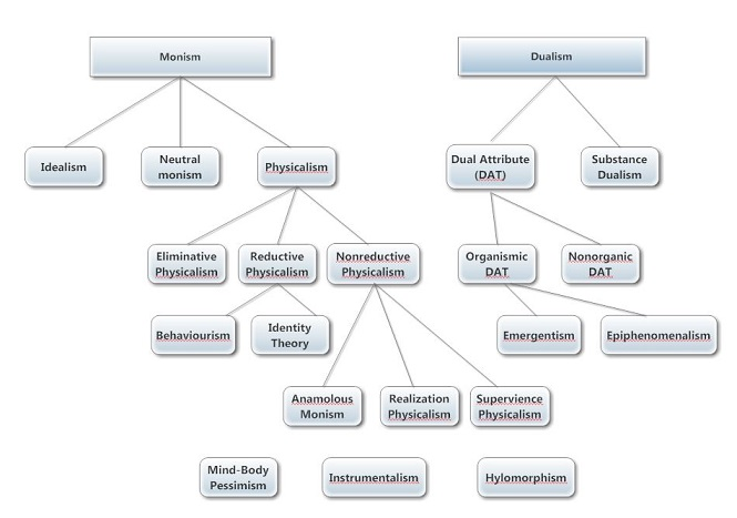 a comparison of the philosophies of physicalism and dualism Dualism vs physicalism philosophy paper 11/19/13 property dualism throughout the medical field, the theory of the mind has an important impact on how medicine is practiced in society.