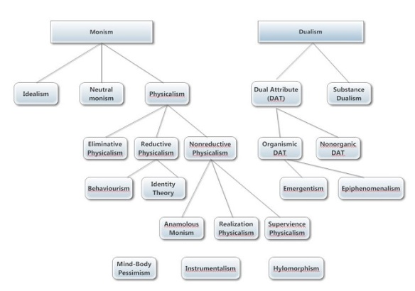 functionalism as a dualist and a monist theory The mind is about mental processes, thought and consciousness the body is about the physical aspects of the brain-neurons and how the brain is structured.