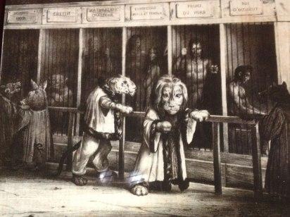 human-zoos