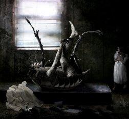 kafka__s_metamorphosis___by_chryssalis-d3it9o6