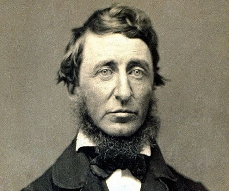 henry david thoreau civil disobedience other essays Civil disobedience argues that citizens should not permit their governments to  overrule their consciences, and  the selected essays of henry david thoreau.