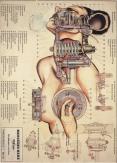 fernando-vicente011