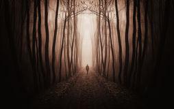 surreal-dark-forest-man-walking-fog-red-37184321