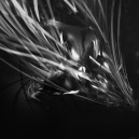 papers_co-vh27-line-abstract-art-dark-black-pattern-6-wallpaper