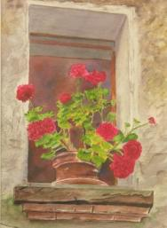 O-_dscn1119_Geraniums_in_windowsill