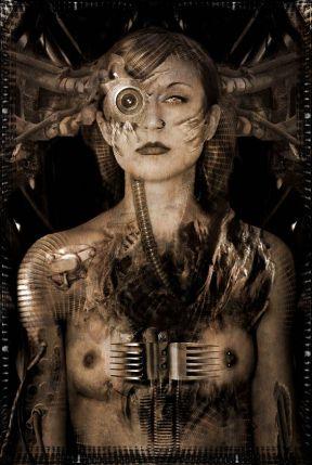 ccda923e1428eba433718d3f697fedcd--female-cyborg-cyborg-art