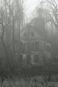 1169049d9dc34a5de5ab9e39ae7d1ace--spooky-house-scary-houses