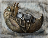 cicadacradle_F2-500